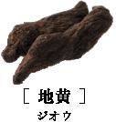 [ 地黄 ]ジオウ