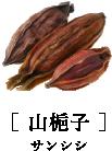 [ 山梔子 ]サンシシ