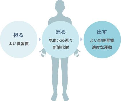摂る(よい食習慣)→巡る(気血水の巡り、新陳代謝)→出す(よい排便習慣、適度な運動)